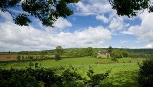 Surrey property finders